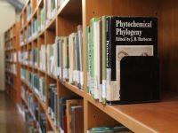 corridoio sotto le finestre